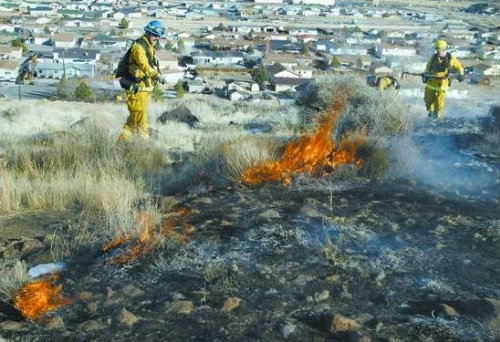 Carson City firefighters extinguish hot spots on January 26, 2007 at a 37-acre brush fire near Flowery Avenue in Dayton.  From left, paramedic Jim White, Capt. John Easterling and firefighter Travis Howe were among the more than 65 area firefighters who responded from eight agencies.  Photo credit - Cathleen Allison/Nevada Appeal