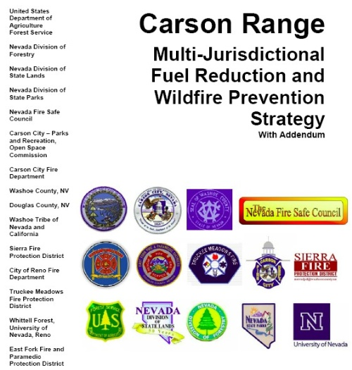 Carson City Fuels Plan Cover image