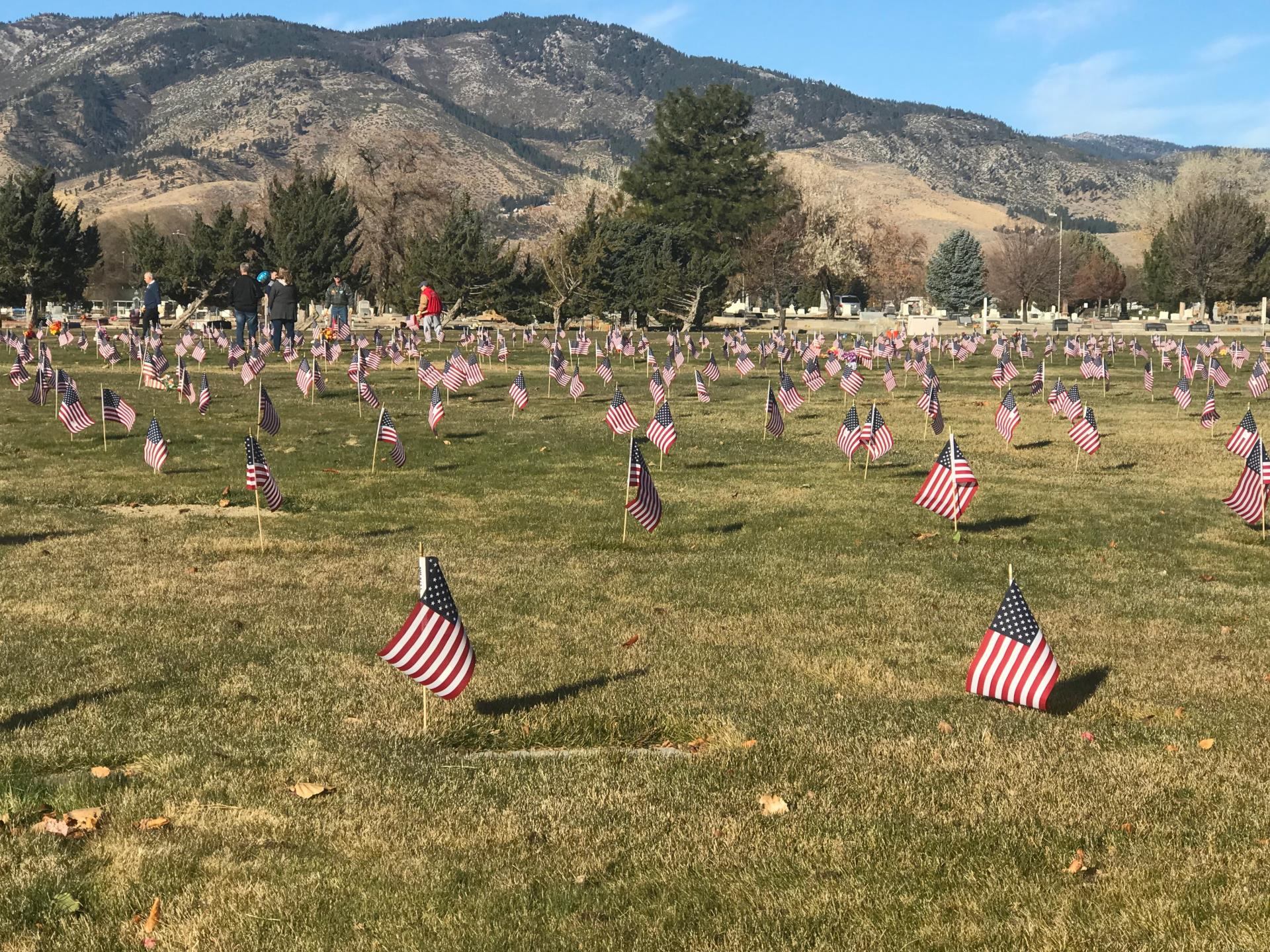 Veterans Day flags 2