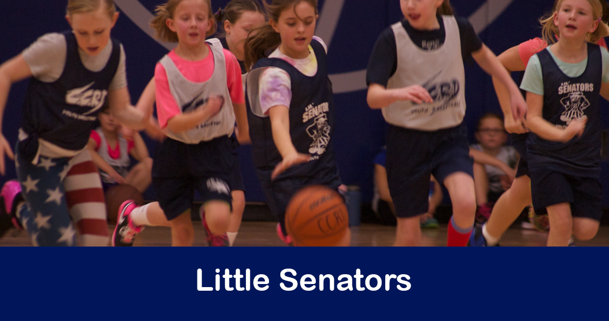 Little Senators