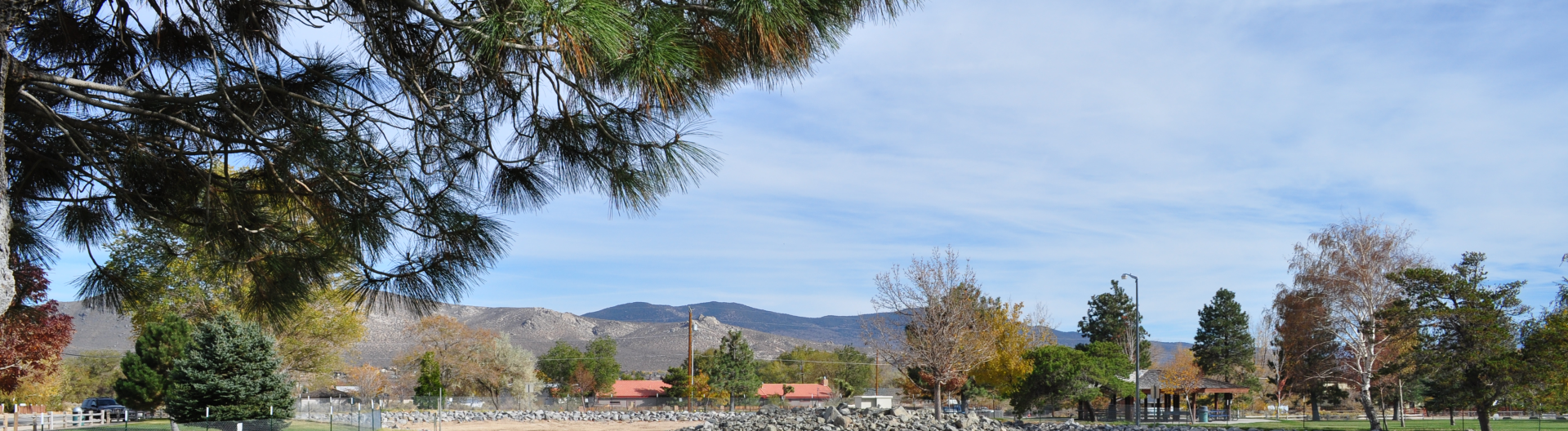 Ross Gold Park Carson City