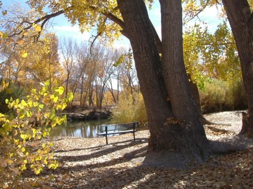 Riverview Park #5