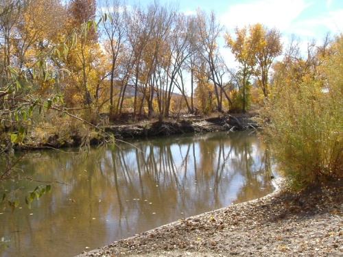 Riverview Park #4