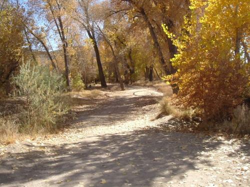 Riverview Park #3