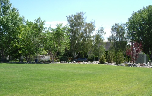 Sunset Park #3