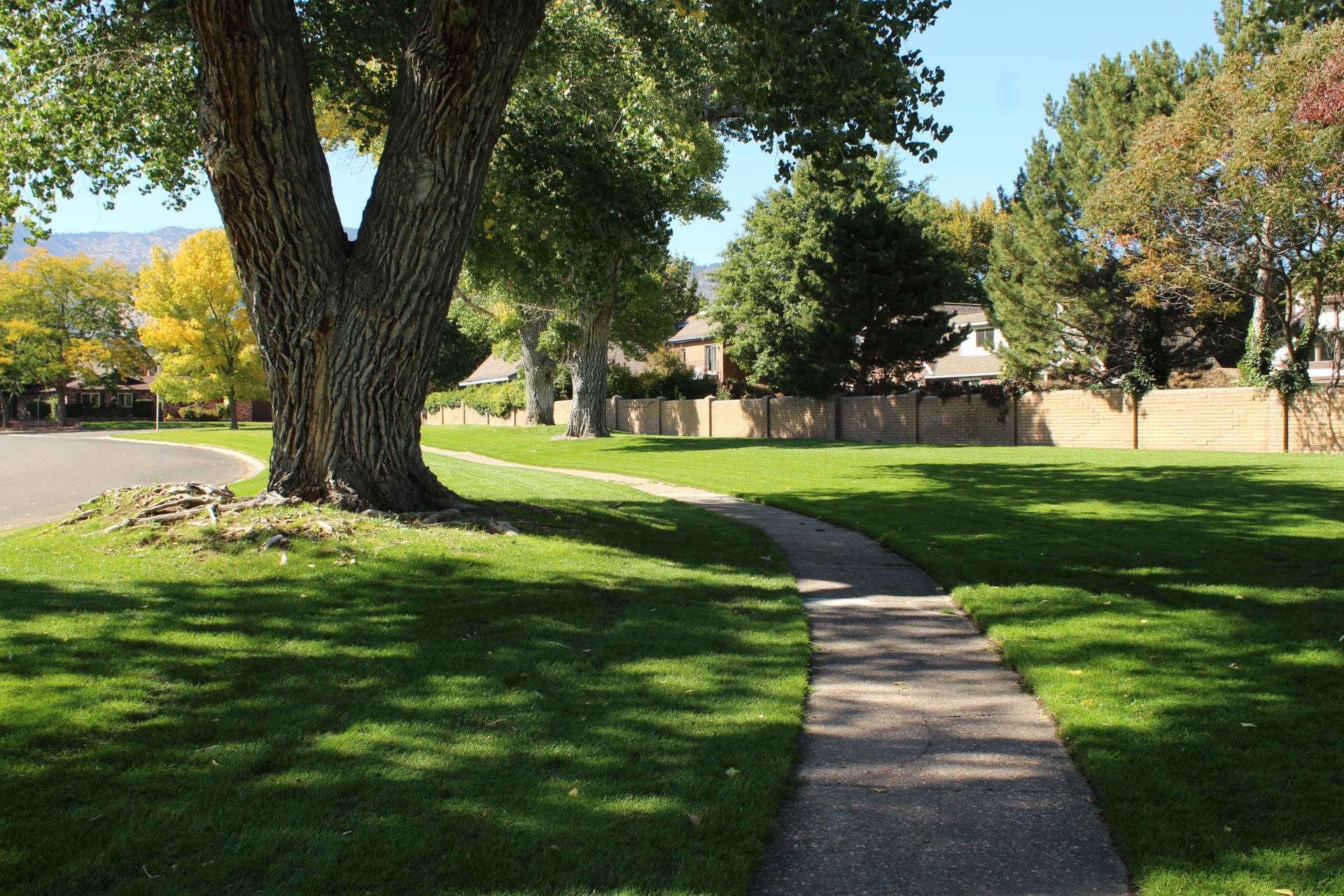 Monte Vista Park #2