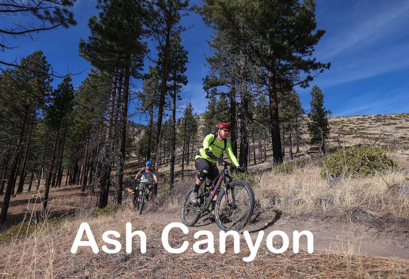 ashcanyon