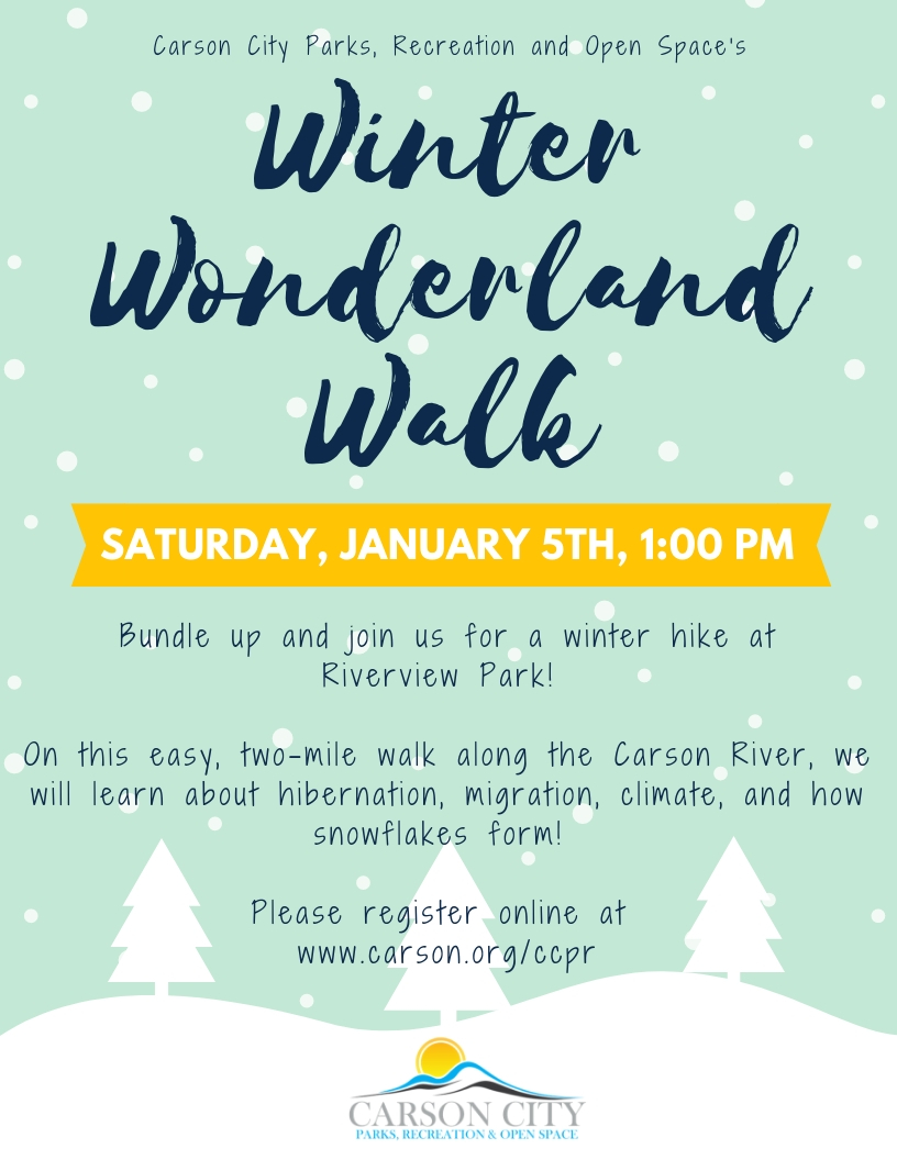 WinterWonderland Walk